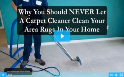 Carpet Cleaners And Rugs