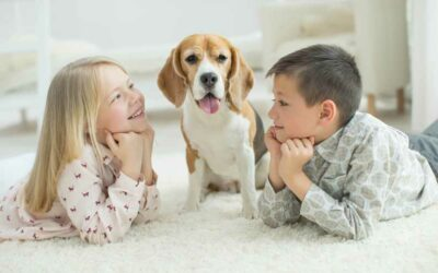 Are your cleaning products safe for children and pets to play on?